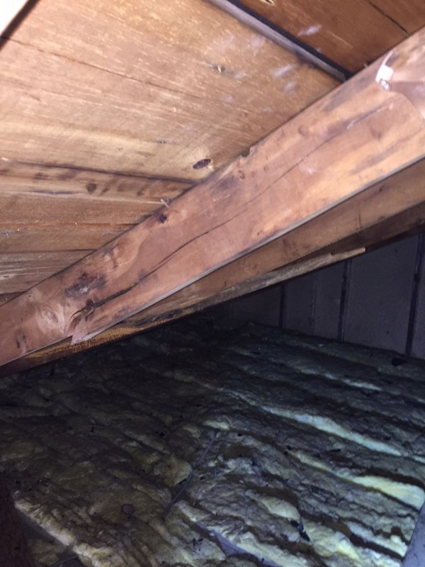 Cracked rafter no longer providing adequate support for the roof.